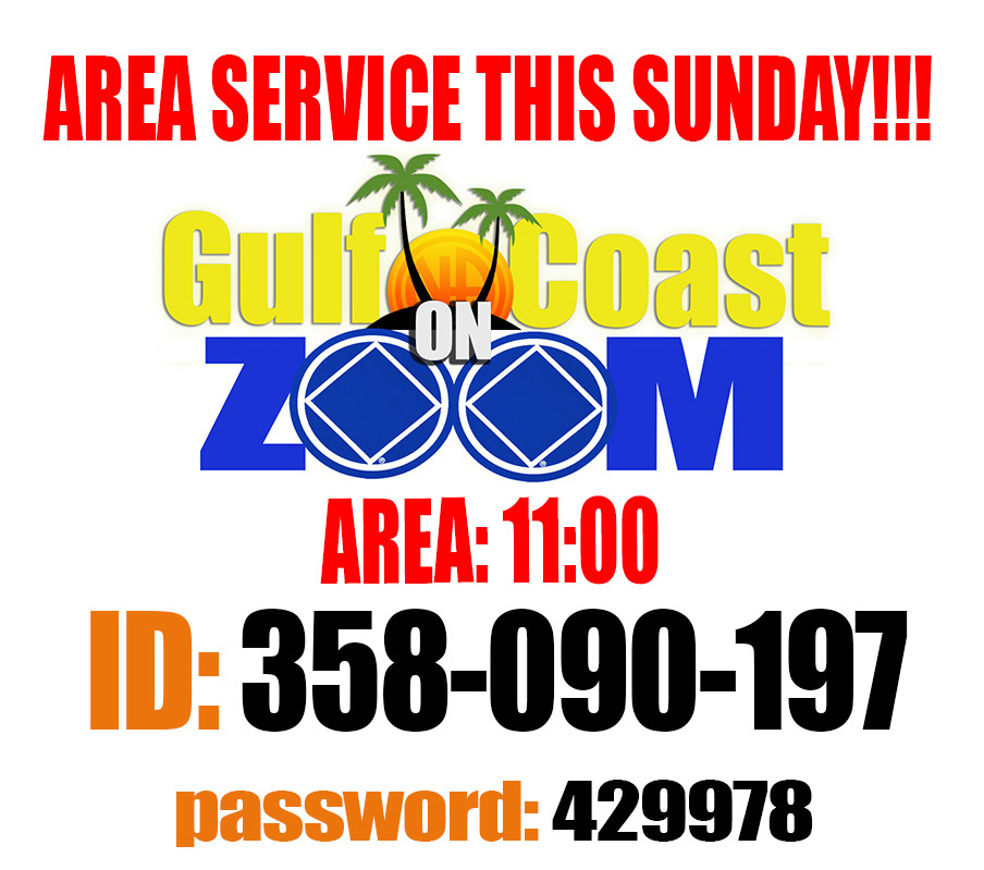 Gulf Coast Area Service @ On Zoom